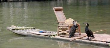A jangada do cormorão e do bambu Fotos de Stock Royalty Free