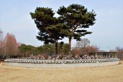 Jangdokdae, traditional Korean terrace for Jangdok or Onggi jars stock photo