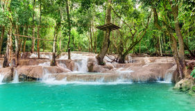 Jangle landscape with amazing turquoise water of Kuang Si cascad Stock Photos