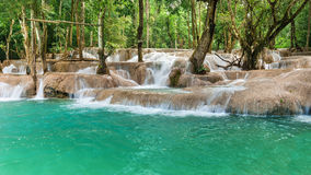 Jangle landscape with amazing turquoise water of Kuang Si cascad Royalty Free Stock Images