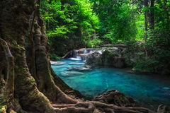 Jangle landscape with Erawan waterfall. Kanchanaburi, Thailand Royalty Free Stock Photography