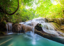 Jangle landscape with Erawan waterfall. Kanchanaburi, Thailand Stock Photography