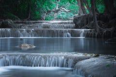 Jangle landscape with Erawan waterfall. Kanchanaburi, Thailand. Jangle landscape with flowing turquoise water of Erawan cascade waterfall at deep tropical rain Royalty Free Stock Photos