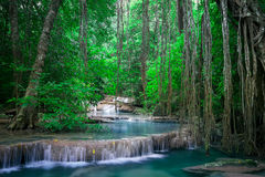 Jangle landscape with Erawan waterfall. Kanchanaburi, Thailand Royalty Free Stock Photos