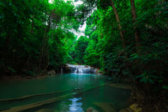 Jangle landscape with flowing turquoise water and fish of Erawan Stock Photo