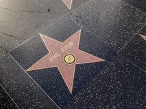 Janis Joplin Star en el pavimento con las estrellas en Hollywood Fotos de archivo