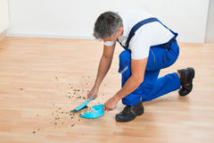 Janitor Sweeping Floor With Brush And Dustpan Stock Image