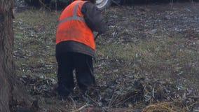 Janitor w mundurze usuwa świntuchy spadać liście zbiory wideo
