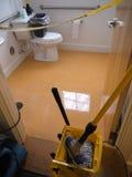 Janitor: waxed bathroom floor stock images