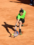 Janko Tipsarevic Photo libre de droits