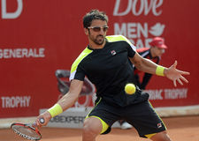 Janko Tipsarevic. ATP Tennis player Janko Tipsarevic pictured in action during his  ATP 250 tournament BRD Nastase Tiriac Trophy game against Thomas Fabbiano Stock Images