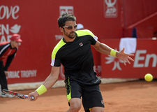 Janko Tipsarevic. ATP Tennis player Janko Tipsarevic pictured in action during his  ATP 250 tournament BRD Nastase Tiriac Trophy game against Thomas Fabbiano Stock Photos