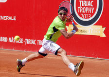 Janko Tipsarevic ATP Tennis player Royalty Free Stock Image