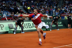 Janko Tipsarevic-10 Royalty Free Stock Photos
