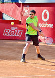 Janko Tipsarevic Royalty Free Stock Images