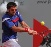 Janko Tipsarevic, Tennis  2012. 2012 World Team Cup. This photo shows Serb player Janko Tipsarevic during his singles match with Alex Bogomolov of Russia. This Stock Photography