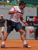 Janko Tipsarevic Tennis Player celebrates Royalty Free Stock Photo