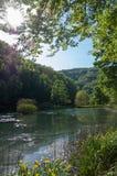 Jankovac sjön i Forest Park Jankovac, natur parkerar Papuk Arkivfoton