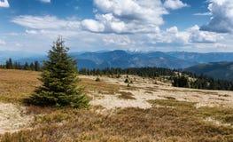 Janosikova kolaren - national reservation, Slovakia Royalty Free Stock Images