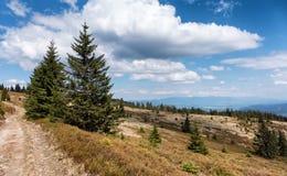 Janosikova kolaren - national reservation, Slovakia Royalty Free Stock Photos