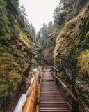 Janosikove Diery峡谷/峡谷, Mala Fatra,斯洛伐克 图库摄影