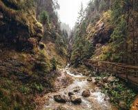 Janosikove Diery峡谷/峡谷, Mala Fatra,斯洛伐克 库存照片