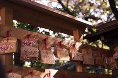 Janpanese życzenia karta w świątyni Zdjęcie Stock
