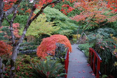 Janpanese garden Royalty Free Stock Photography