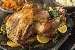 Jantar caseiro de Turquia da ação de graças Fotografia de Stock Royalty Free
