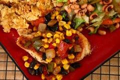 Jantar da galinha de Tex Mex imagens de stock