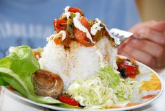 Jantar do arroz Imagens de Stock