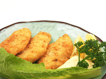 Jantar dos peixes imagem de stock