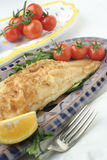 Jantar e salada dos peixes; bandejas cerâmicas Fotografia de Stock Royalty Free