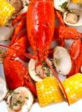 Jantar fervido da lagosta com moluscos e milho Fotografia de Stock