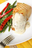 Jantar grelhado da galinha Fotografia de Stock