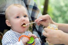 Jantar na natureza Fotos de Stock