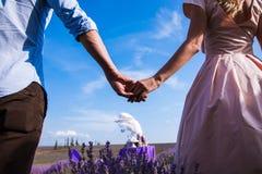 Jantar romântico dos amantes em um campo da alfazema Fotos de Stock Royalty Free