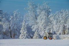 Jante jaune du pays des merveilles d'hiver images libres de droits