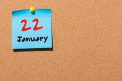 22 januari Dag 22 van maand, Kalender op cork berichtraad Bloem in de sneeuw Lege ruimte voor tekst De idylle van de zomer Stock Fotografie