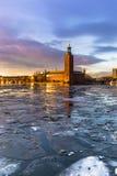 21 januari, 2017: Panorama van het Stadhuis van Stockholm door Royalty-vrije Stock Foto