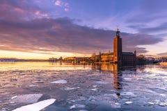 21 januari, 2017: Panorama van het Stadhuis van Stockholm door Stock Foto