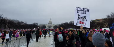 21 JANUARI, 2017 Vrouwen` s Maart protesten Stock Afbeeldingen