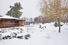 Januars Park Stockbild