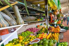 Vegetables and tropical fruit at the Medellin colombia retail ma. January 2018  In the morning the retail market of Medellin is full of locals and tourist as it Royalty Free Stock Photography