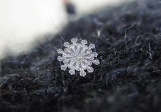 January. Rare 12 - sided snowflakes. royalty free stock image