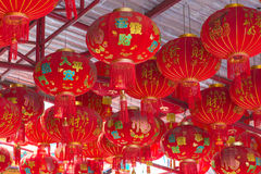 JANUARY 10, 2017: Traditional Chinese lantern hanging on tree in Stock Image