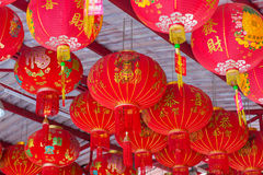 JANUARY 10, 2017: Traditional Chinese lantern hanging on tree in Royalty Free Stock Photo