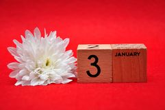 3 January on wooden blocks with a white daisy. On a red background royalty free stock photos