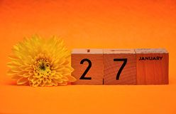 27 January on wooden blocks with a yellow daisy. On an orange background royalty free stock photo