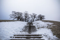 22 janvier 2017 : Escalier à un point de vue de Skogskyrkogarden dedans Photos stock